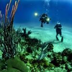 Potapljaški tečaj – spoznavanje podvodnega sveta